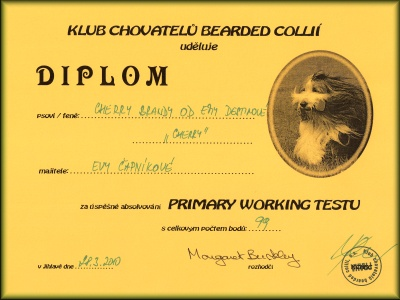 diplom - Primary test